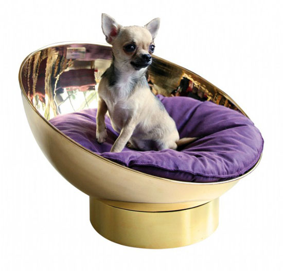 B.Pet Bubble Bed