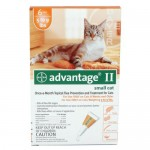 Bayer Advantage II Flea Control for Cats Kills 90% Fleas in Less than 24-Hours