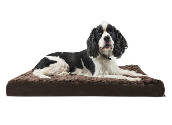 Betsy Ultra Plush Deluxe Ortho Pet Bed by Tucker Murphy Pet