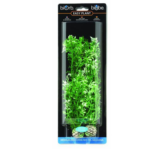biOrb Winter Flower Plants - biOrb Accessories Plants