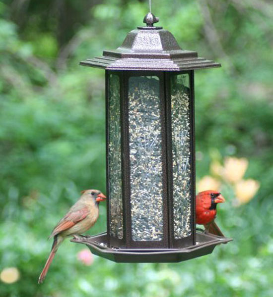 Birdscapes 366 Tall Tulip Garden Lantern Bird Feeder