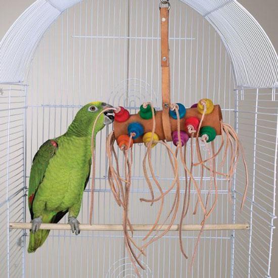 Bonkers Bird Toy - Brainy Bird Wild Series Toys