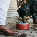 YETI Boomer 8 Dog Bowl - Double Wall Stainless Steel Bowl with Duracoat Color