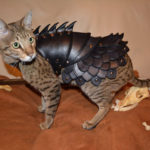 Cool Cat Battle Armor : War-Ready Leather Cat Costume