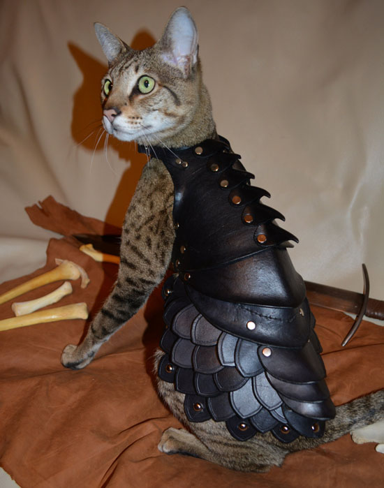 Cat Battle Armor : Cool War-Ready Leather Cat Costume by Savagepunk