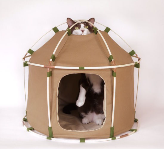 Cat Study House TheGiant Cat House by 41st Century