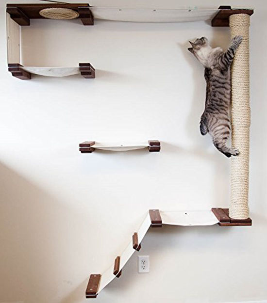 CatastrophiCreations Cat Mod Climb Track : Cat Activity Center