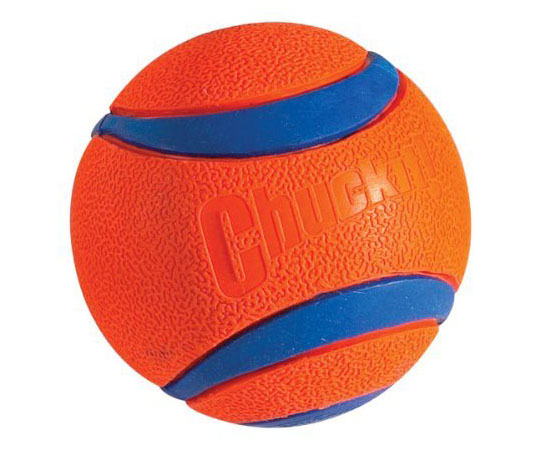 Chuckit! Ultra Dog Ball Toy in Orange