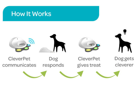CleverPet Interactive Device for Dogs