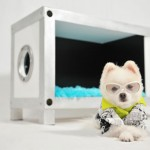 Modern Container Doghouse 21 by Unleash Studio