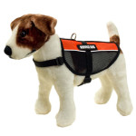 Cool Red Mesh Service Dog Vest Informs People That Your Dog is Not Just Pet