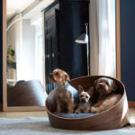 Modern Miacara Covo Dog Lounge with Raised Rear to Give a Sense of Safety