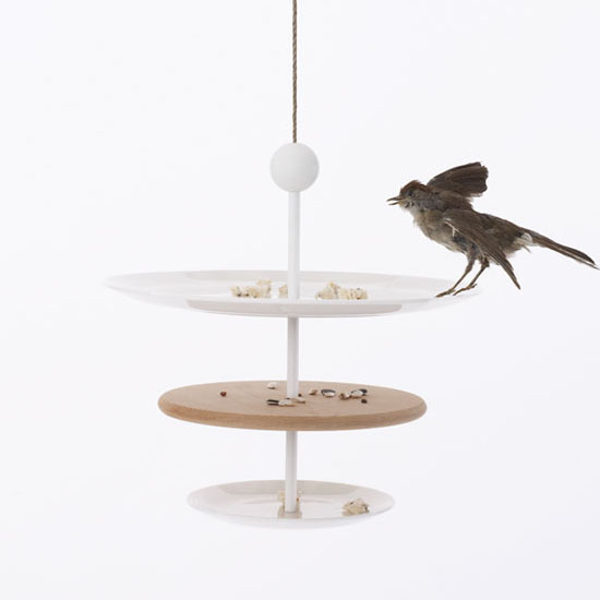 Dish of Desire Bird Feeder