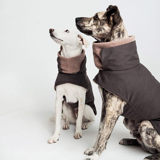 Dog Coat Brooklyn by Cloud7