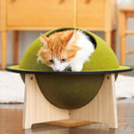 Cute Japanese Dorayaki Cat House with Delicious Filling Part Would be Your Cat!
