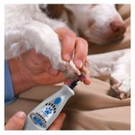 Dremel 7300-PT Pet Grooming Kit for Easy Nail Trimming