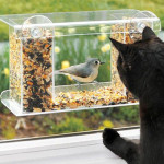Up, Close and Personal with Duncraft 74405 Songbird One-Way Mirror Window Bird Feeder