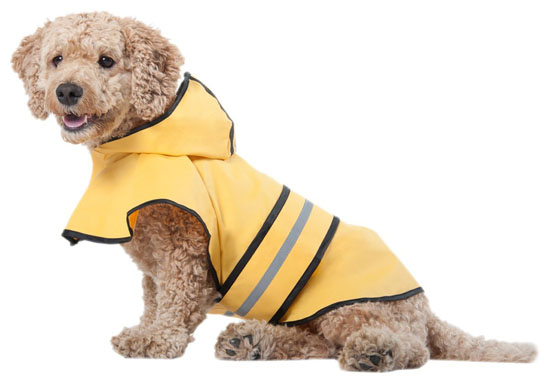 Fashion Pet Rainy Days Slicker