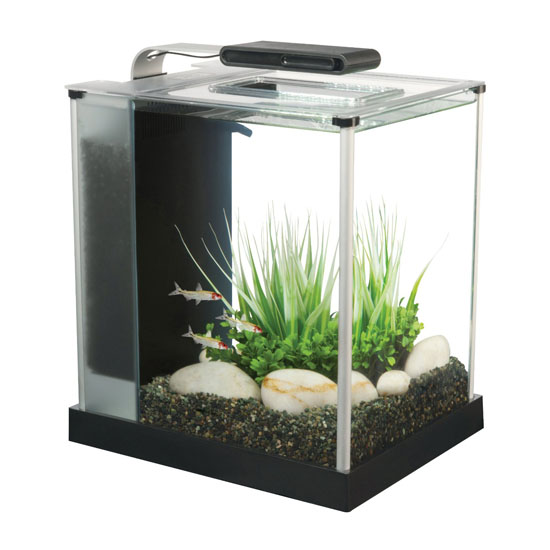 Aquarium Starter Kit - Fluval Spec III Aquarium Kit