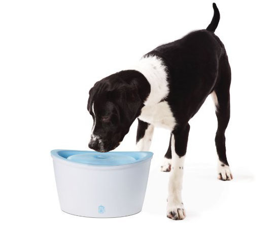 Hagen Dogit Design Fresh and Clear Dog Drinking Fountain