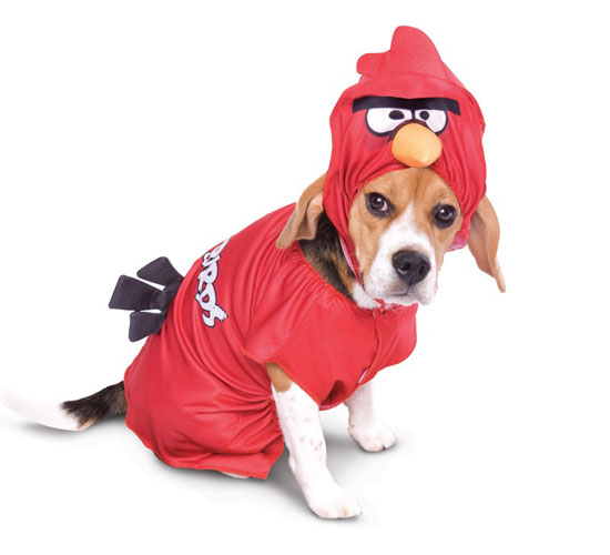 Top 20 Dog Halloween Costumes - Angry Birds Red Bird Pet Costume
