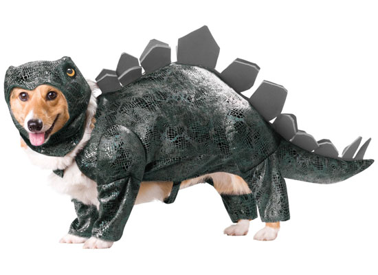 Top 20 Dog Halloween Costumes - Animal Planet Stegosaurus Dog Costume