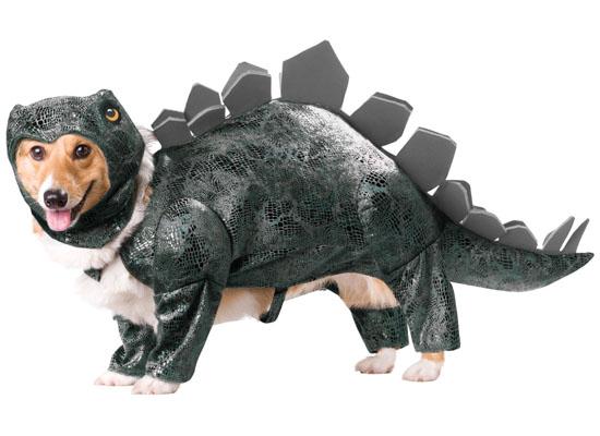Top 20 Dog Halloween Costumes - Animal Planet Stegosaurus Dog Costume