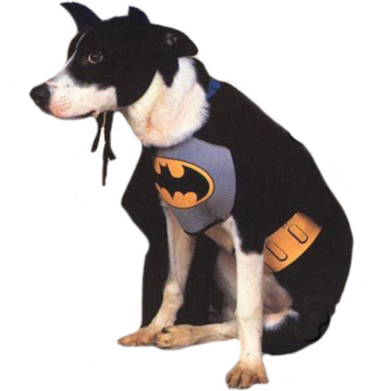 Top 20 Dog Halloween Costumes - Batman Dog Costume