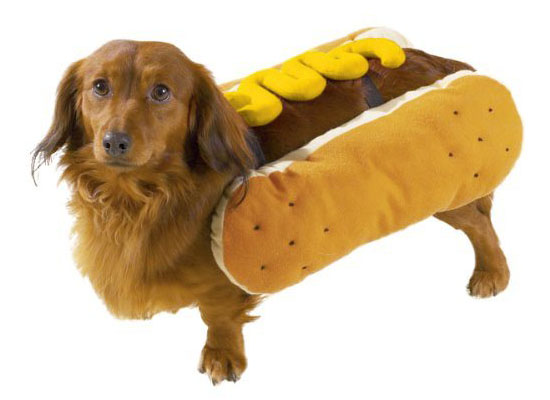 Top 20 Dog Halloween Costumes - Casual Canine Hot Diggity Dog Costume