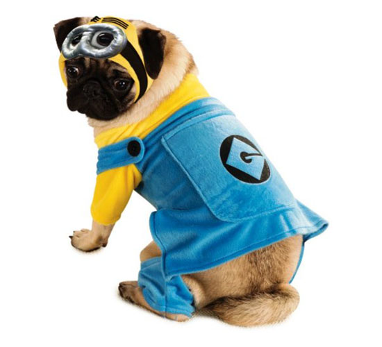 Top 20 Dog Halloween Costumes - Despicable Me 2 Minion Pet Costume