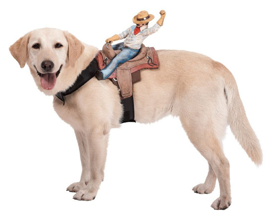 Top 20 Dog Halloween Costumes - Dog Riders Cowboy Costume