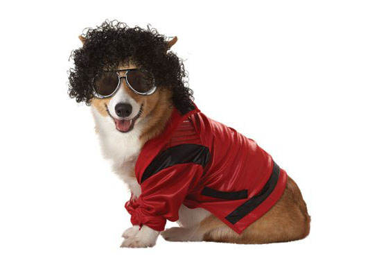 Top 20 Dog Halloween Costumes - Pop King Pet Costume
