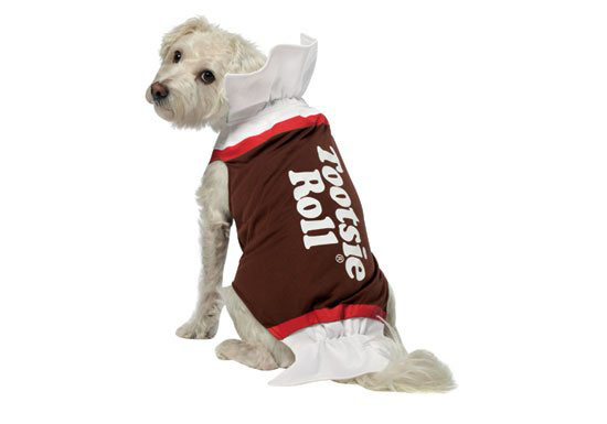 Top 20 Dog Halloween Costumes - Tootsie Roll Dog Costume