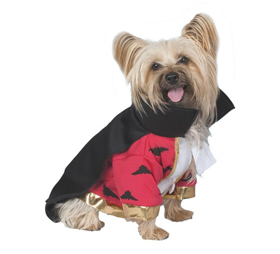 Top 20 Dog Halloween Costumes - Vampire Dog Costume