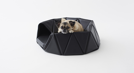 Heads or Tails Dog Accessory Set