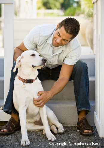 How to handle itchy dog? Try VetionX Derma-IonX Natural Remedy