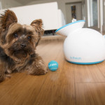 iFetch : Automatic Ball Launcher for Your Dog