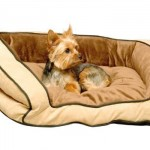 K&H Bolster Couch Pet Bed Provides Cozy Bed and Secure Feeling to Your Pet