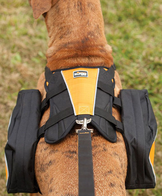 Kurgo Wander Pack Dog Backpack