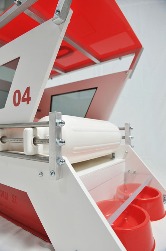 Lifeguard Doghouse 04 by Melissa Rivera of Unleash Studio