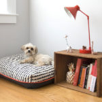 Lion + Wolf Pet Bed Features Cool Geometric Patterns and Bright Colors