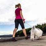 Lishinu Handsfree Retractable Dog Leash Worn On Your Wrist