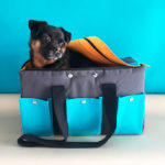 Colorful Melollevo 2-in-1 Pet Carrier and Travel Bed Summer Edition