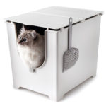 Tall Modkat Flip Litter Box with Scoop and Reusable Liner Features Three Lid Positions