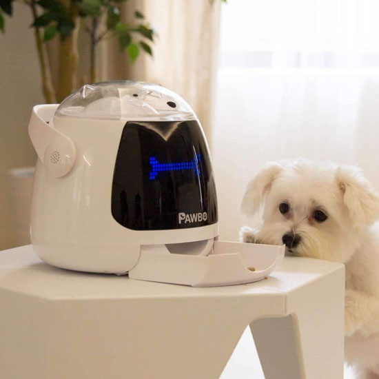 Pawbo Munch Dog Treat Dispenser