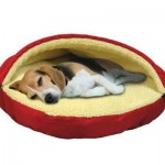 Pet Parade Pet Cave Dog Bed Offers Comfort and Warmth for Dogs That Love to Burrow