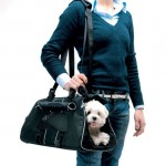 Petego Jet Set Pet Carrier by Emanuele Bianchi