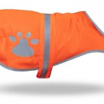 Be Safe and Be Seen with Petflect Reflective Dog Vest