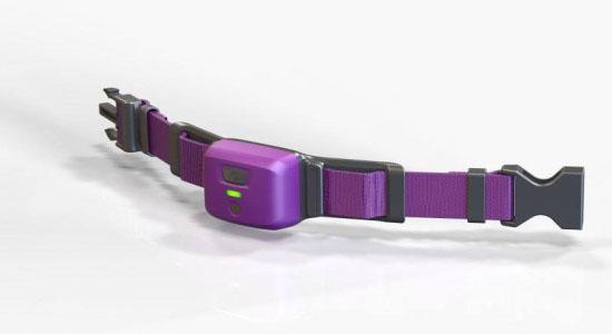 PetPace Pet Health Monitor Smart Collar