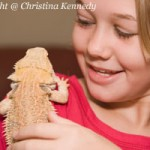 Top 5 Positive Aspects of Having a Reptile as a Pet